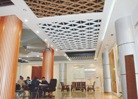 Curved Aluminum Wall Panel / Perforated Metal Ceiling Panels for building wall